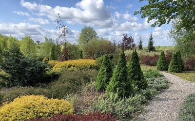 ArtEco, ogrody Olsztyn, Giżycko, Mrągowo, Mazury 6