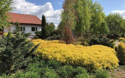 ArtEco, ogrody Olsztyn, Giżycko, Mrągowo, Mazury