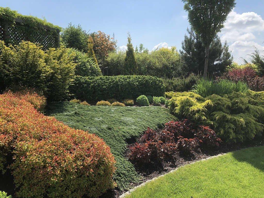 Ogród w Mrągowie